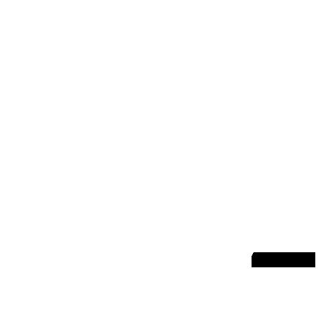 trasporti